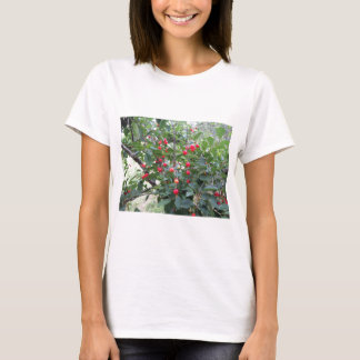 Red Montmorency cherries on tree in cherry orchard T-Shirt