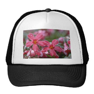 Red Morning dew flowers Hats