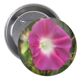 Red Morning Glory Flower Buttons