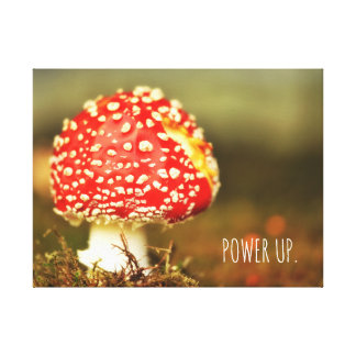 Red Mushroom. Power Up. Canvas Print