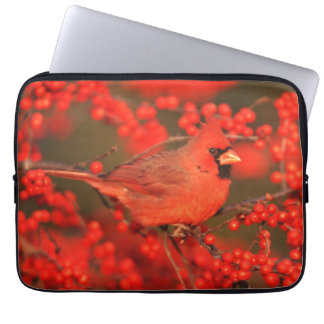 Red Northern Cardinal Male, IL Laptop Sleeve