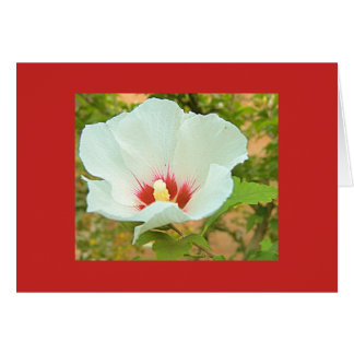 RED NOTE CARD WITH WHITE FLOWER
