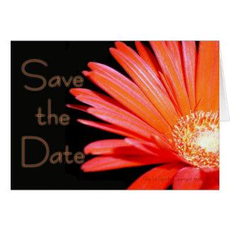 Red Orange Gerbera Daisy Save the date Card