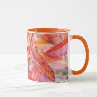Red & orange leaves mug - banks of Walden Pond