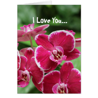 Red Orchid blossom Greeting Card