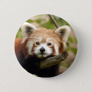 red-panda-007 6 cm round badge