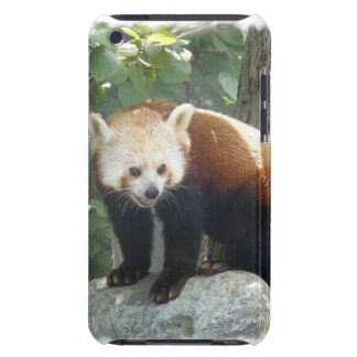 Red Panda Bear itouch Case Barely There iPod Cover