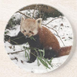 Red panda drink coaster