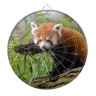 Red Panda Eating Green Leaf Dartboard