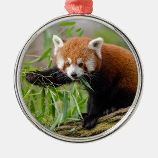 Red Panda Eating Green Leaf Metal Ornament