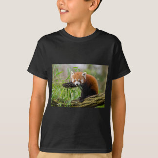 Red Panda Eating Green Leaf T-Shirt