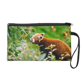 Red Panda In A Green Environment Wristlet
