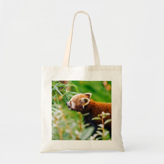 Red Panda In A Green Environment Budget Tote Bag
