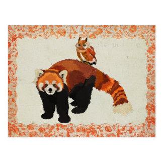 Red Panda & Owl Postcard
