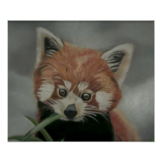 Red Panda Pastel Painting Artwork Poster