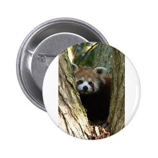 Red panda pins