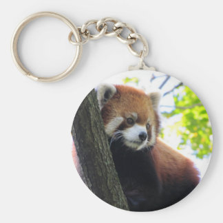 Red Panda Portrait Basic Round Button Key Ring
