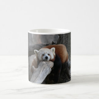 Red panda relaxing coffee mug