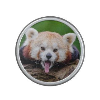 Red Panda Speaker