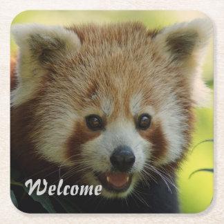 red panda square paper coaster