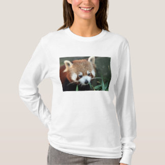 Red Panda, Taronga Zoo, Sydney, Australia T-Shirt