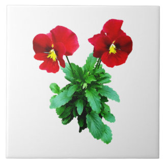 Red Pansy Duo Large Square Tile