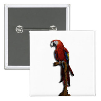 Red Parrot alone button