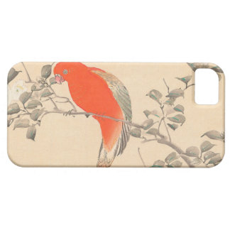 Red Parrot and White Flower Matsumoto Keibun iPhone 5 Cases