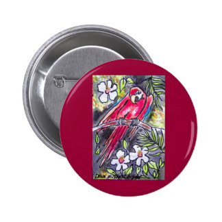 red parrot pinback button