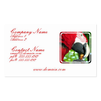 Red Parrot Business Card