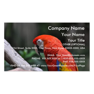Red Parrot - business card template