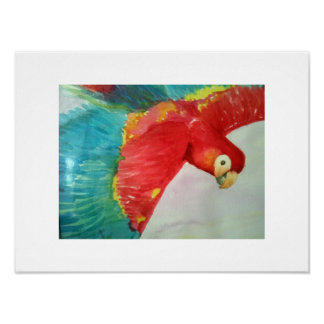 Red Parrot in Flight Poster