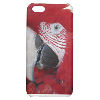 Red Parrot iPhone4 Case Case For iPhone 5C