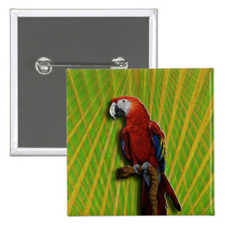 Red Parrot & Palms button