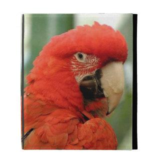 Red Parrot & Palms iPad Folio Case