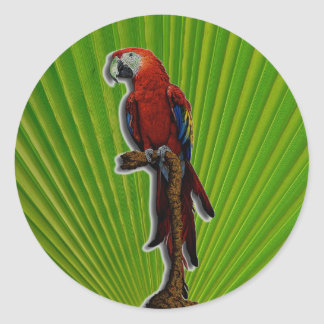 Red Parrot & Palms stickers