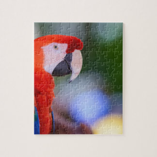 Red Parrot Photograph Jigsaw Puzzle