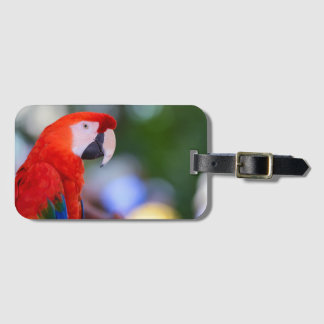 Red Parrot Photograph Luggage Tag