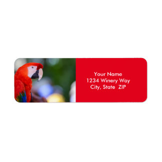 Red Parrot Photograph Return Address Label