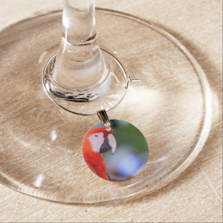 Red Parrot Photograph Wine Charm