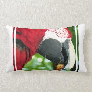 Red Parrot Pillow