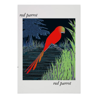 Red Parrot Poster Print