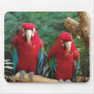 Red Parrots Mouse Pad