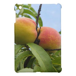 Red peaches hanging on the tree . Tuscany, Italy iPad Mini Cover