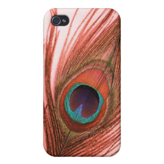 Red Peacock Feather iPhone 4 Case