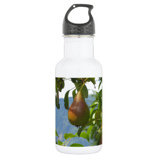 Red pears on tree branches 532 ml water bottle