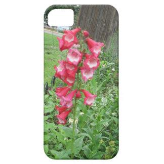 Red Penstemone iPhone Case iPhone 5/5S Cases
