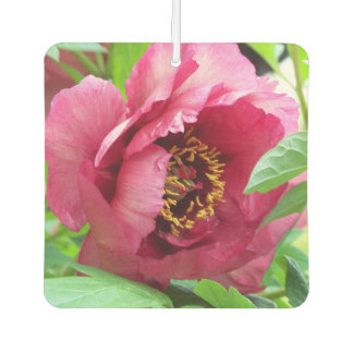 Red Peony Floral Car Air Freshener
