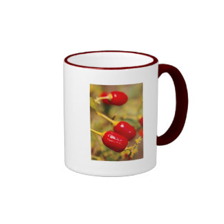 Red Peppers Coffee Mugs