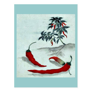 Red peppers with plant growing in the background U Post Cards